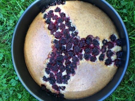 Brombeeren Kuchen Eifrei