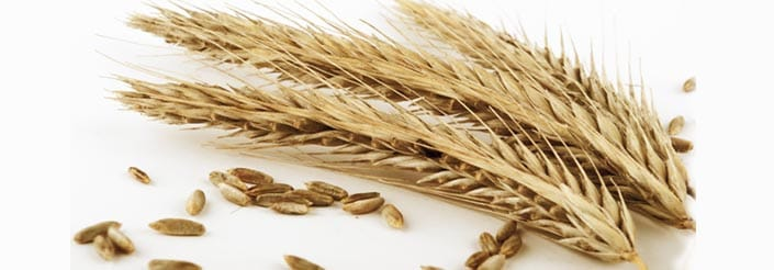 Nutritional value of grains